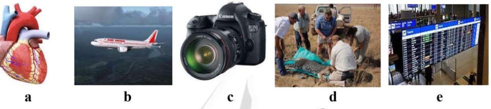 استفاده از تصاویر در طراحی سئوالات زبان